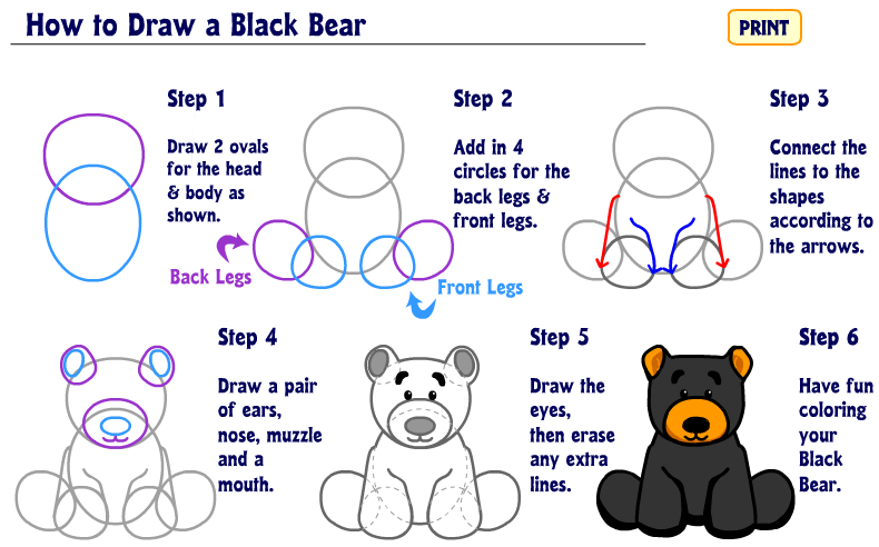 how to draw a little bear