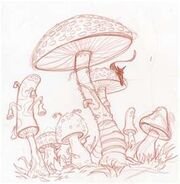 Fungus-study.jpg
