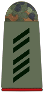 File:Army Specialist 1st Class.png