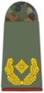 Army Brigadier General