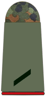File:Army Private 3rd Class.png