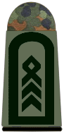 File:Army Sergeant Major.png