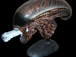 Alien 3 model bust