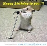 Funny-happy-birthday-quotes-1-1-