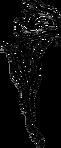 LogoKallisti