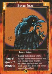 Black Beak Corax