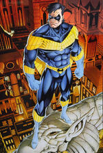 Nightwing yellow
