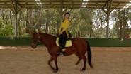 RidingBoots8
