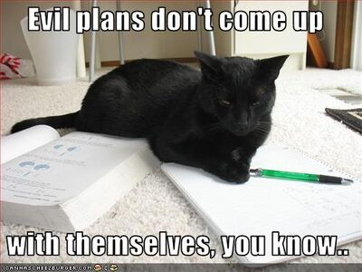Funny-pictures-cat-makes-evil-plans
