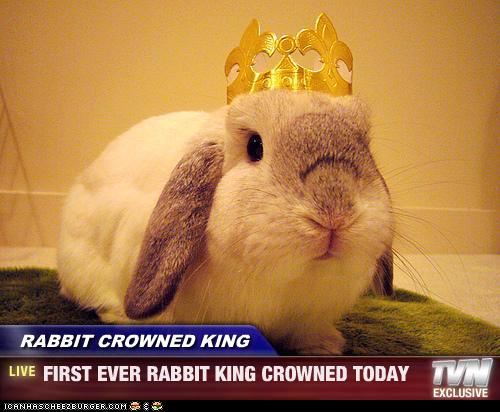 File:Rabbitking.jpg