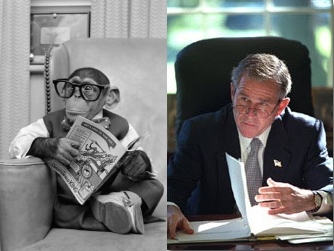 File:MonkeyGWBushChairReadingGlasses.jpg