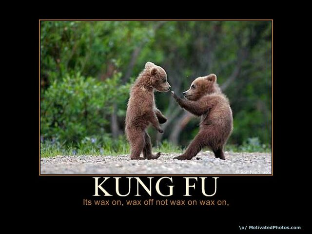 File:Bearkungfu.jpg