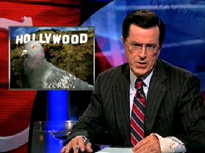 File:HollywoodPigeons.jpg