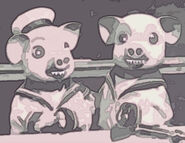 Frightening pigs