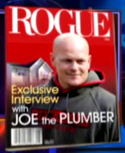 Joe-the-plumber-rogue