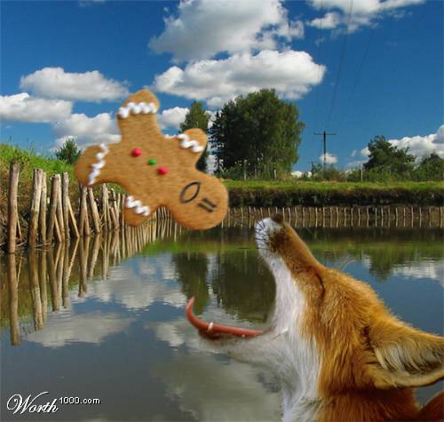 File:Fox eating gingerbread man.jpg