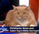 Christiane Aman-purr