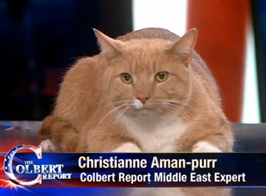 File:Christianne Aman-purr.png