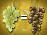 GrowthHormoneGrapes