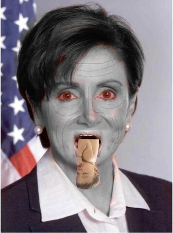 File:The Pelosi.jpg