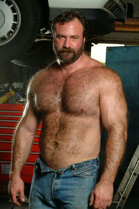 Gay Bear Mechanic