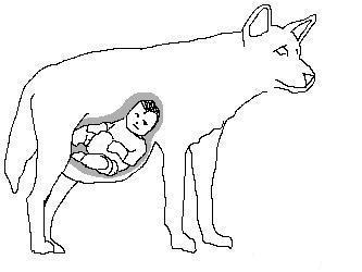 File:Dingowithbaby.jpg
