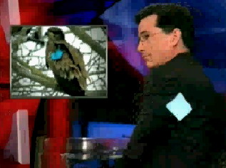 File:Colbert-and-Stephen-Jr.jpg