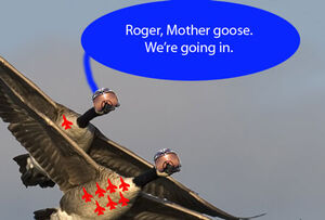 Fighter-geese