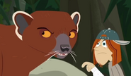 Jimmy and Ring-tailed Mongoose