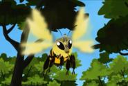 Flight.pollinators.bee.2