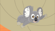 Koala Balloon