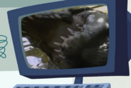 Mom of a Croc-Wild Kratts.08