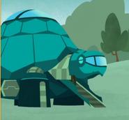 Tortuga.2