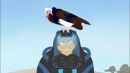 Vulture on Walrus Martin