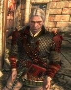 Tw2 screenshot armor vranarmor