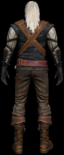 Geralt 2 back
