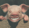 File:Smiling Pig.png