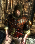 Tw2 screenshot armor elven