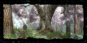 Places Druids Grove