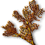 File:Tw3 buckthorn.png