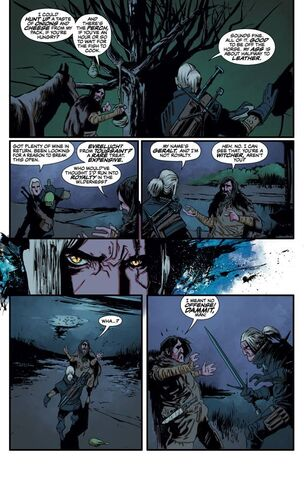 File:The Witcher Dark Horse No1 page3.jpg