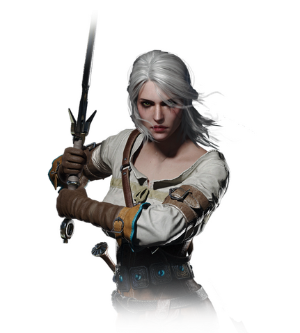 File:Tw3 journal ciri.png