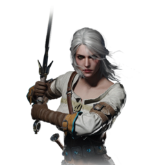 Adult Ciri journal entry image