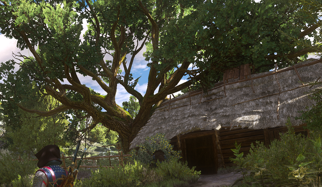 File:Tw3 Topicals hut.png