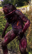 Tw2 Greater rotfiend