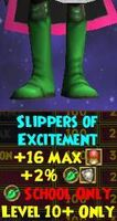 Slippers of Excitement Female