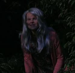 Juliet van heusen wizards of waverly place wiki