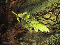 File:Way of the Leaf.jpg