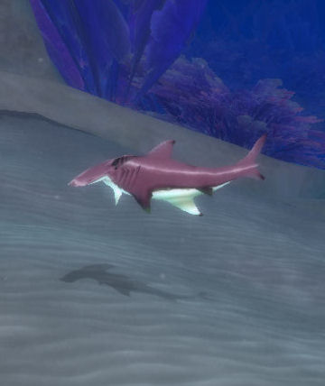 Spinescale hammerhead wowwiki fandom powered by wikia for Shark tank fairy door