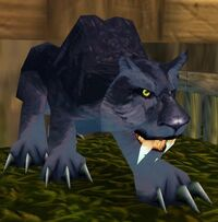 Kurzen War Panther